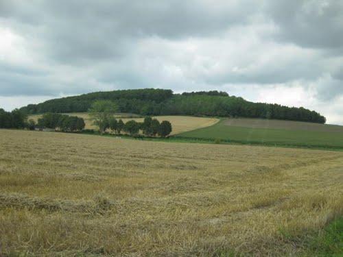 Burg am Stoppelberg